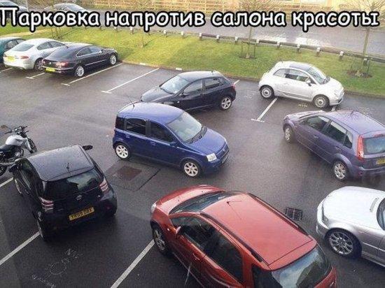 smeshnie_kartinki_139523189636 (550x412, 209Kb)