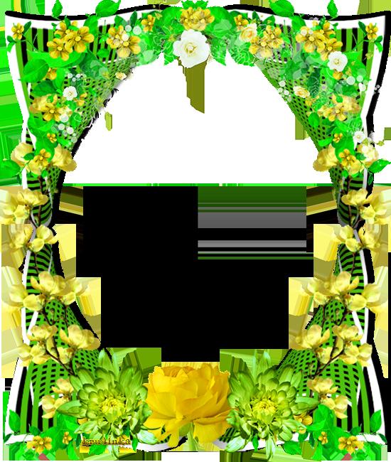 Зеленая2 (550x650, 566Kb)