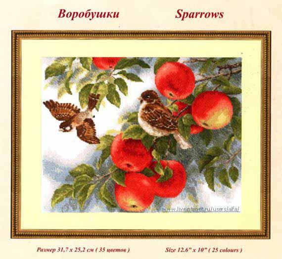 Птицы,совушки | Записи в