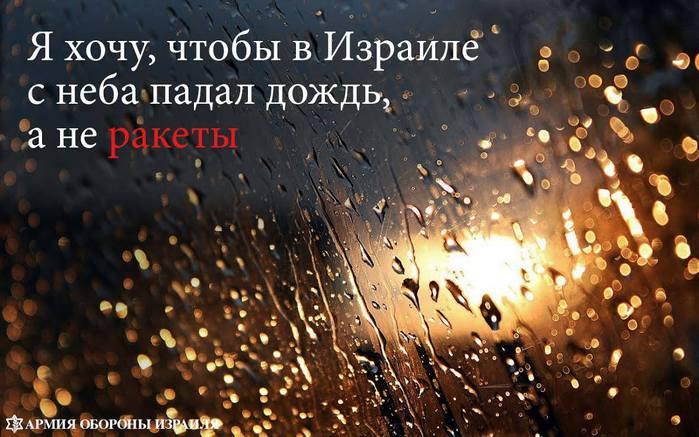 1149555_1457433521152733_1566969641_o (700x437, 61Kb)