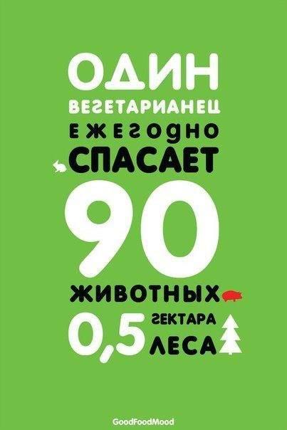 1457666_10202320495108414_1909974649_n (403x604, 22Kb)