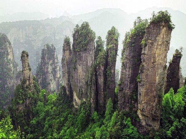 нац.парк, Китай 23 (604x453, 308Kb)