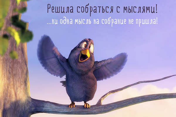 http://img0.liveinternet.ru/images/attach/c/10/111/471/111471624_5332158_bird2.png