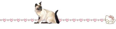 кошка 2 (400x103, 17Kb)