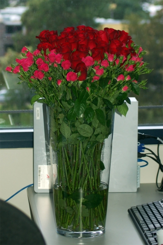 ваза с цветами (332x500, 190Kb)