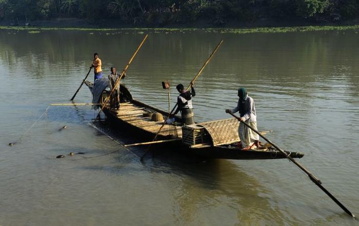 рыбалка с выдрами (700x440, 261Kb)