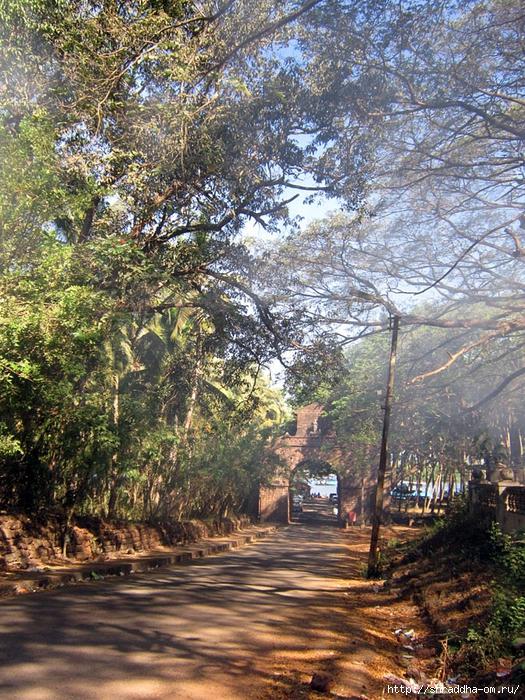 India Goa 2014 (158) (525x700, 483Kb)