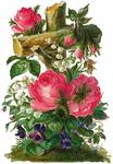 Превью Flowers84 (444x640, 340Kb)