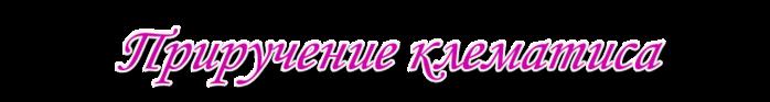 4382988_Prirychenieklematisa (700x93, 48Kb)
