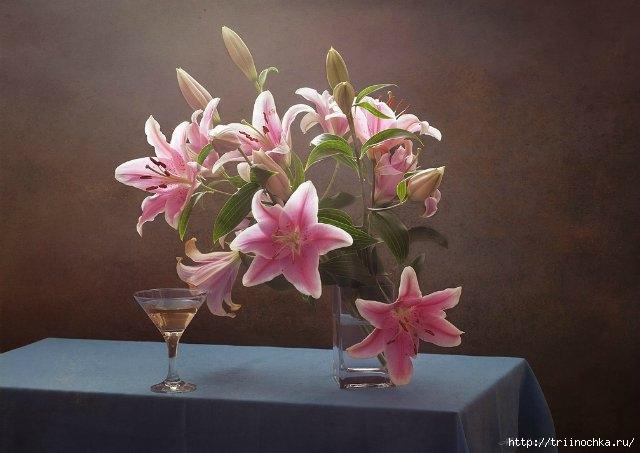 Лилии, аккорд и радости и нежности