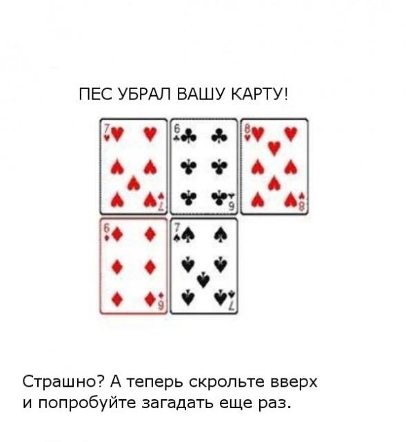 image003 (589x640, 82Kb)