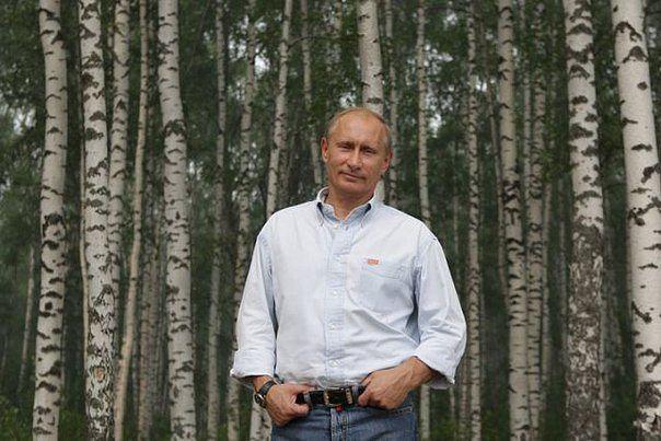 Путин1 (604x403, 56Kb)