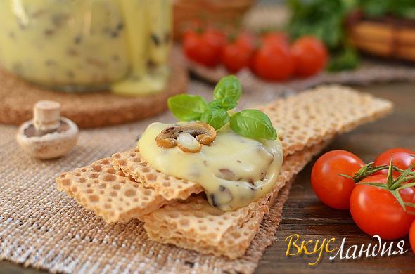 Plavlenyy syr v domashnih usloviyah 4 (590x390, 38Kb)