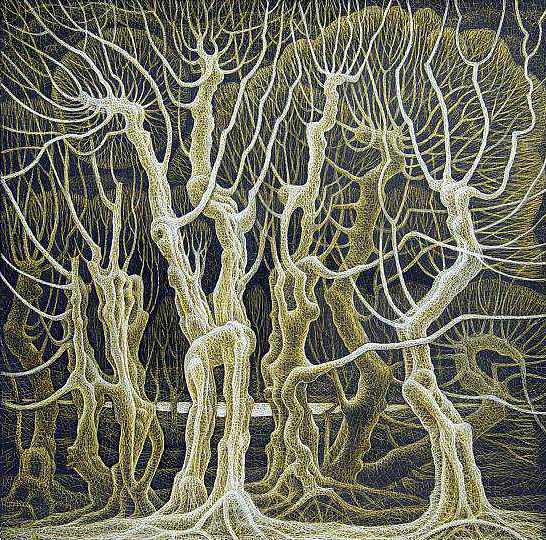 Любовь деревьев, ночь (546x540, 577Kb)