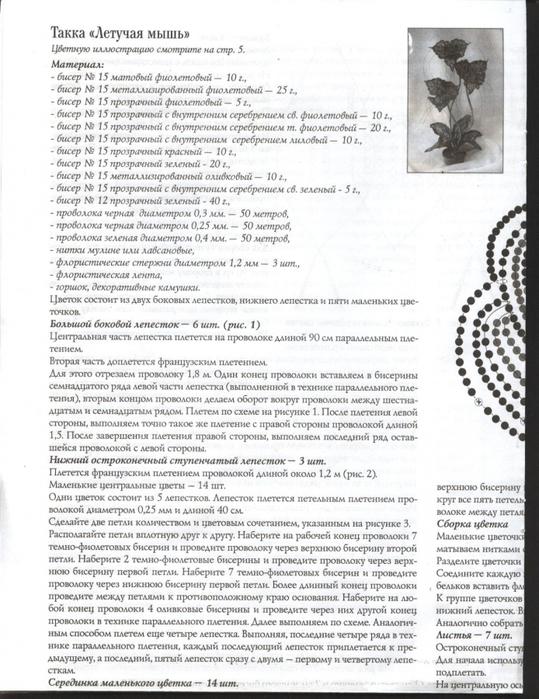 """Такка """"Летучая мышь"""" сделана"""