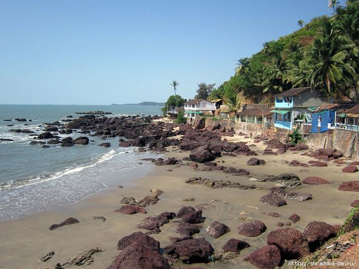 India Goa 2014 (200) (700x525, 310Kb)