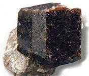 dravit01 (175x150, 35Kb)