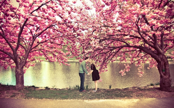 3925073_4379105R3L8T8D1000sakuratreeflowerspringpondcouplekisslovenature (700x437, 176Kb)