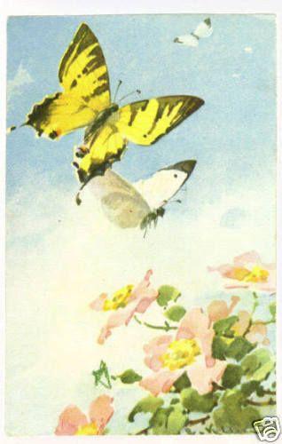 Бабочки и другие насекомые. Картинки для декупажа (1) (318x500, 119Kb)