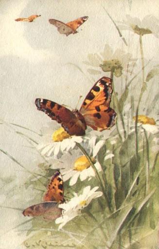Бабочки и другие насекомые. Картинки для декупажа (2) (327x512, 135Kb)