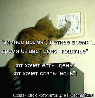 kotomatritsa_h7 (371x381, 63Kb)