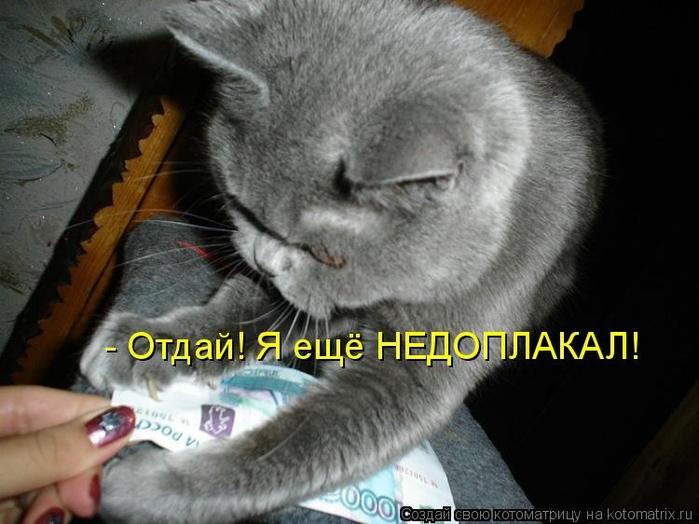 kotomatritsa_YY (700x524, 219Kb)
