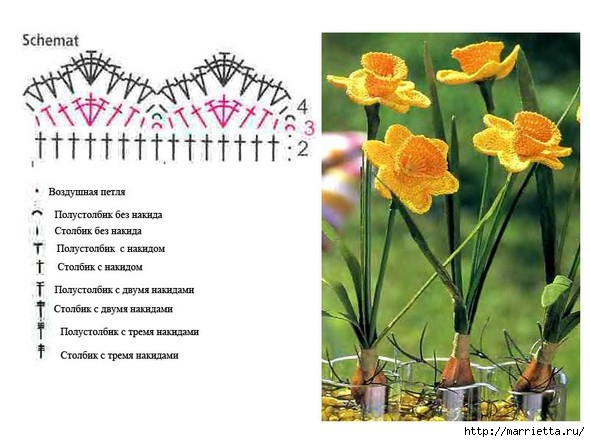 Flores de ganchillo.  Narciso (1) (590x442, 146Kb)
