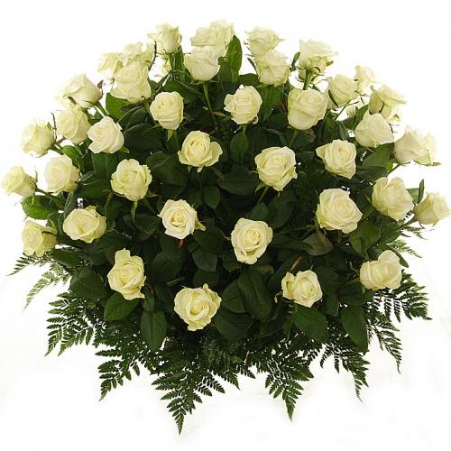 белые розы) (500x500, 104Kb)