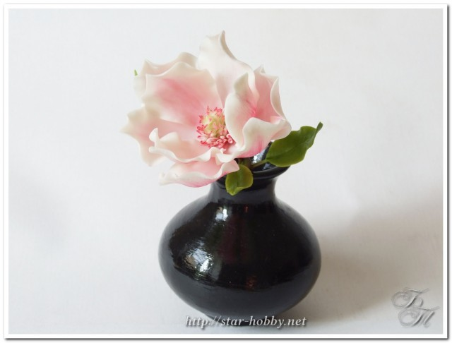 1396800094_magnolia_211640x486 (640x486, 37Kb)