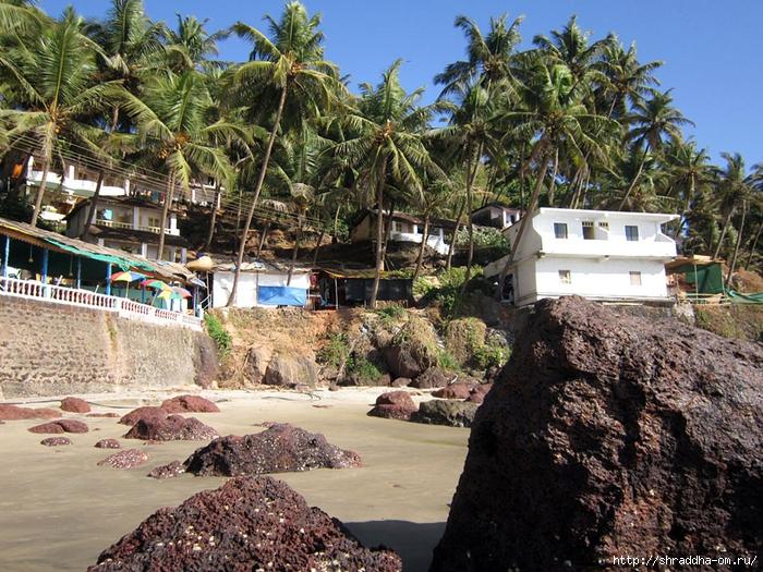 India Goa 2014 (53) (700x525, 418Kb)
