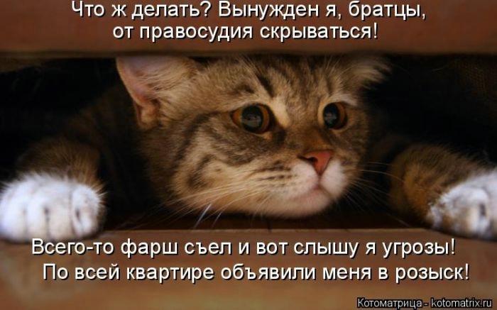 1396805359_cm_20140404_03814_027 (700x437, 124Kb)