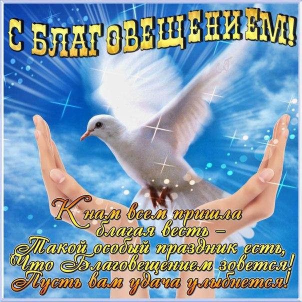 http://img0.liveinternet.ru/images/attach/c/10/111/838/111838344_golub.jpg