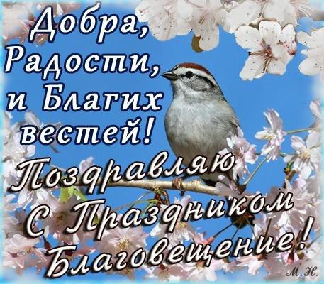 http://img0.liveinternet.ru/images/attach/c/10/111/838/111838648_aM4zc26098A.jpg