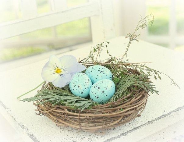 яйцак (604x466, 56Kb)