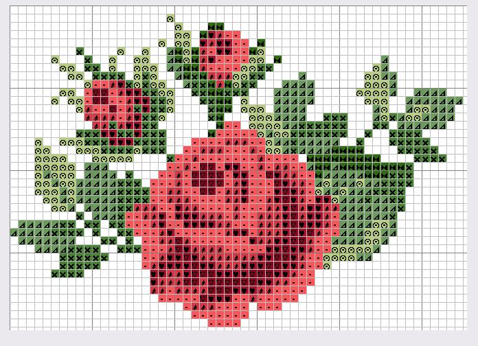 Розы - Узоры для вышивок