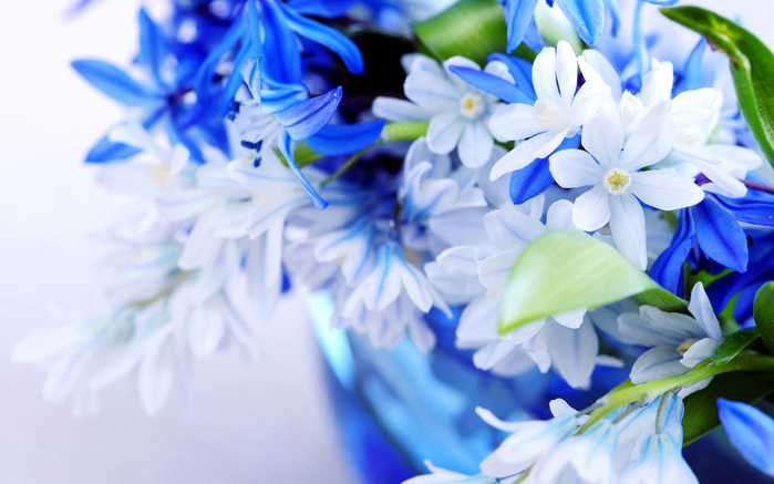 flowers_in_basket_26 (700x437, 301Kb)