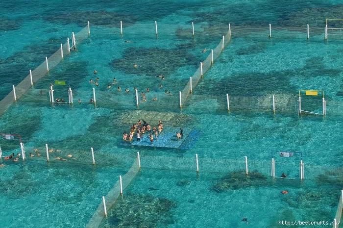 Подводный парк-Маринариум (700x465, 330Kb)