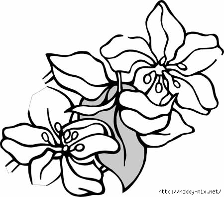 flower-coloring-pages-101 (450x395, 76Kb)