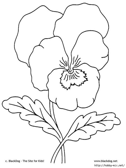 flower04 (525x700, 111Kb)