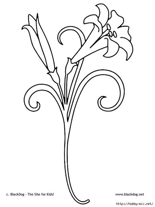 flower05 (525x700, 93Kb)