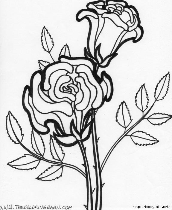 flowers-10 (575x700, 247Kb)