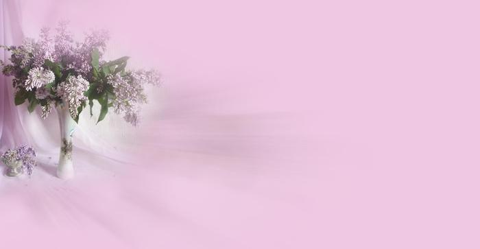 Сирень.Натюрморт. (700x363, 76Kb)