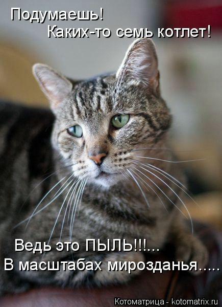 kotomatritsa_gc (435x600, 120Kb)