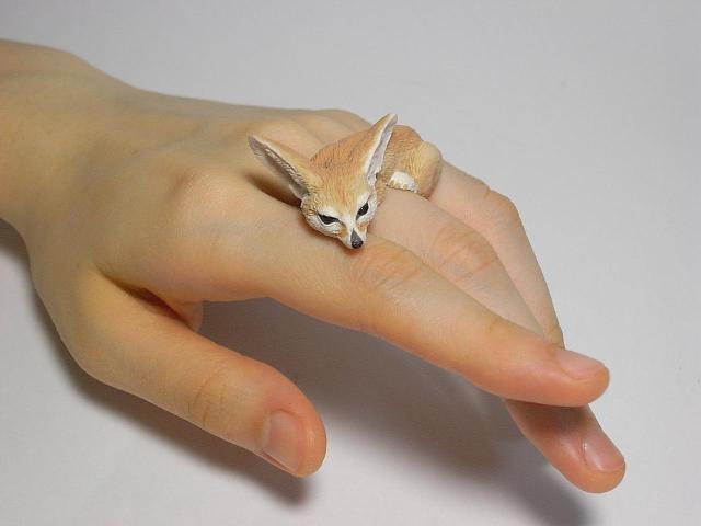 дизайнерские кольца из пластика 4 (640x480, 140Kb)