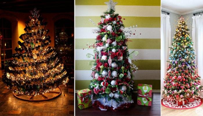 3925073_christmastrees (700x400, 129Kb)