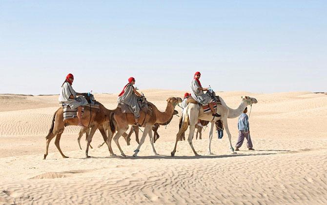 Тунис.jpg1 (670x420, 202Kb)