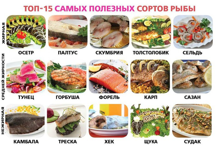 Самые полезные сорта рыбы (700x472, 127Kb)