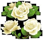 3906024_0_4dcc4_182172ce_S (150x140, 41Kb)