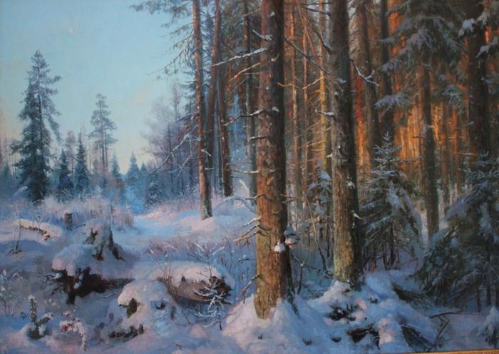 Владимир-Юрьевич-Жданов-Сосновый-бор-в-сиверской (700x496, 382Kb)
