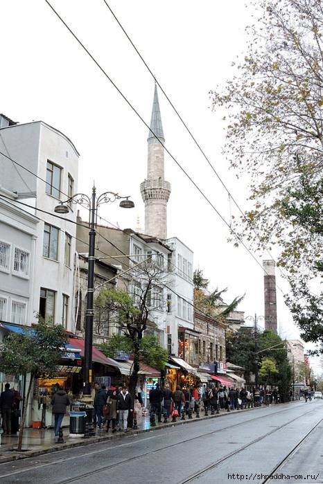 Стамбул (65) (466x700, 298Kb)